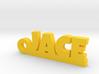 JACE Keychain Lucky 3d printed