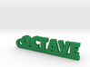 OCTAVE Keychain Lucky 3d printed