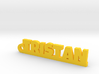 TRISTAN Keychain Lucky 3d printed