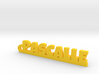 PASCALLE Keychain Lucky 3d printed