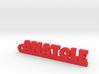 ANATOLE Keychain Lucky 3d printed