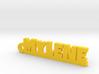 MYLENE Keychain Lucky 3d printed