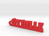 SYBILLE Keychain Lucky 3d printed
