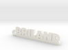 BRILAND Keychain Lucky 3d printed