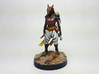 Dragonborn Rogue 3d printed Painted with acrylic paints on a custom 1 inch base.