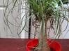 IKEA Plant Pot 3d printed