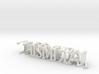 3dWordFlip: THISMETAL/WEBSHOW 3d printed