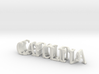 3dWordFlip: CAROLINA/Biological 3d printed