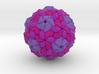Human Parechovirus 3d printed