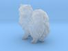 1/12 Color Pomeranian 3d printed