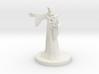 Human Male Sorcerer 3d printed
