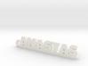 ANASTAS_keychain_Lucky 3d printed