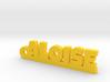 ALOISE_keychain_Lucky 3d printed