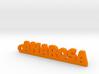 ANAROSA_keychain_Lucky 3d printed