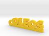 OLEOS_keychain_Lucky 3d printed