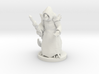 Lizard Folk Druid 3d printed
