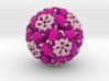 Caulobacter Bacteriophage 3d printed