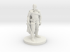 Human Male Fighter 3d printed