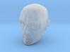 Caucasian Male 1/6 scale action figure head 3d printed