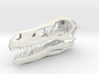 1:2 Velociraptor mongoliensis Skull and Jaw 3d printed