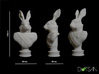 Small Viscount Hare Bust 3d printed