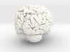 Real 3D Brain rendering  3d printed