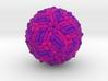 West Nile Virus 3d printed