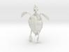 Great A Turtle Skeleton 3d printed