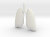 Lung 3d printed