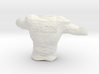 Drew Brees_Torso 3d printed