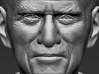 Prince Philip bust 3d printed
