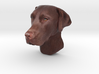 Wall mount / Brown Labrador / 150mm / art.#MK013 3d printed