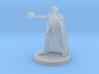 Half Elf Warlock 3 3d printed