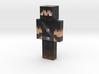 _ShadowPhoenix | Minecraft toy 3d printed