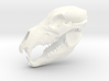 Bear Skull. Jointed Jaw. 10cm 3d printed