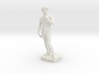 David Statue by Michelangelo 3D print 3d printed