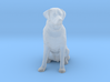 S Scale Labrador 3d printed This is a render not a picture