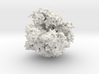 RNA Polymerase - Surface Render 3d printed