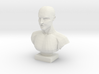 Bust of a Man 3d printed