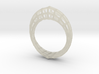 Wireframe  Mobius Strip 3d printed