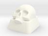 Key Lower Skull 3d printed