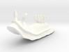 Lani the Nudibranch 3d printed