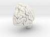 Right Brain Hemisphere 1/1 3d printed