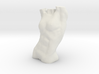 Female Torso 3d printed