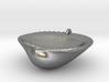 Palm Beach Sea Shell Pendant wtih Jump Ring 3d printed