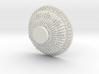 XD1545-grid500-iso170-firma1 3d printed