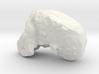 TaungSkull 3d printed