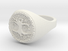 ring -- Sun, 08 Sep 2013 11:27:31 +0200 3d printed