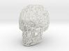 Wireframe Skull Display 3d printed