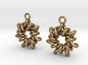 Torus1 Earrings 3d printed